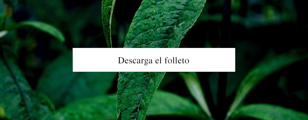 Aldea Maya - Tulum, Quintana Roo