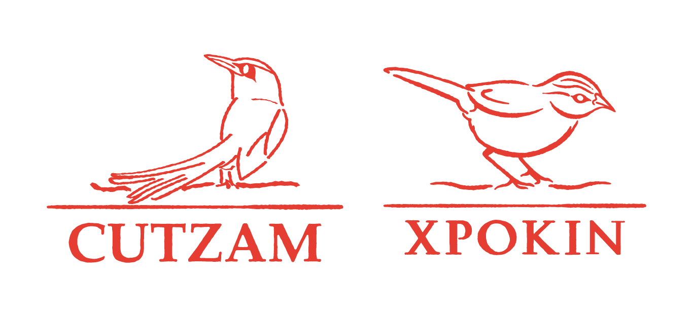 Cutzam y Xpokin, proyecto inmobiliario de bienes raíces premium.
